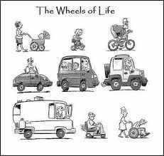 Wheels of Life