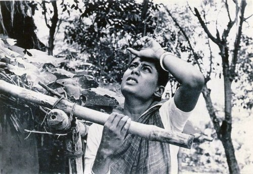 Mrinal Sen's Akaler Shandhaney (1980)