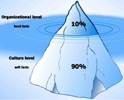 Change Management Iceberg